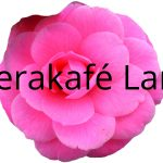 Lørdagsopera – Gjester fra Operakafé Larvik</br>Lørdag 29 okt. kl. 15:30